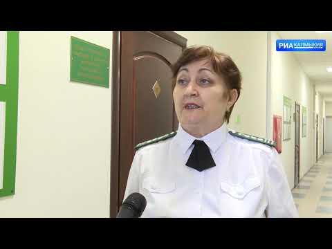 Управлением Россельхознадзора в Республике Калмыкия выявлены факты недостоверного декларирования партий зерна нового урожая объемом 300 тонн