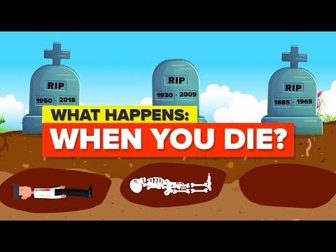 What Happens When You Die? (видео)
