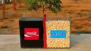 จะเป็นยังไง? ถ้าเอา โค้ก vs เมนทอส ในตู้กระจก!!!