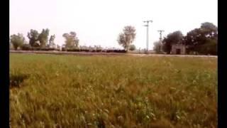 preview picture of video 'Bhai Zahid's Fields Near Qadir Pur, Sahiwal'