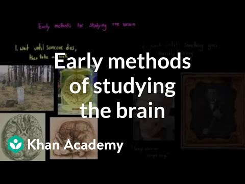 early methods of studying the brain video khan academy