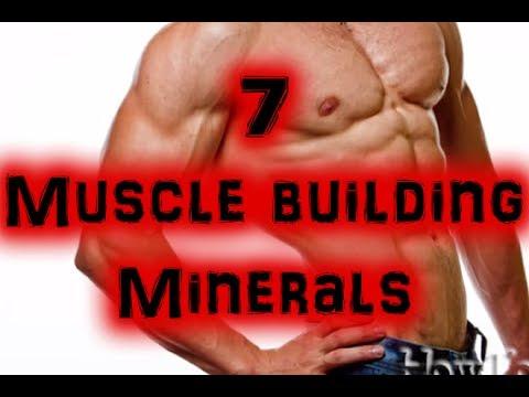 Quels muscles sont utilisés à la course