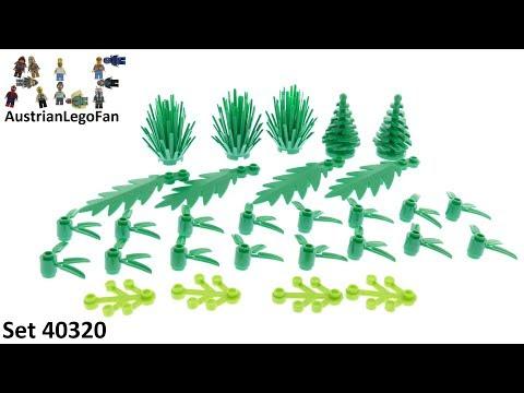 Vidéo LEGO Objets divers 40320 : Des plantes fabriquées avec des plantes