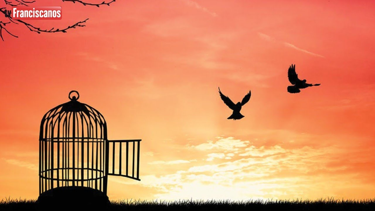 Palavra da Hora | Libertar-se de todo e qualquer apego