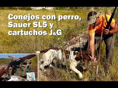 Caza de conejos con escopeta Sauer SL5 y Cartuchos J&G