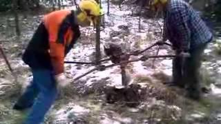 Бензобур STIHL BT 360 для двух операторов - видео №1