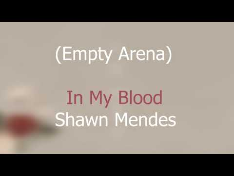 In My Blood (Empty Arena) Shawn Mendes