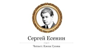 Смотреть онлайн Аудио стих Сергея Есенина «Черемуха»
