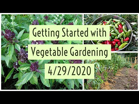 Getting Started with Vegetable Gardening - Webinar - YouTube