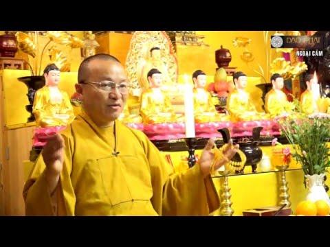 Vấn đáp: Sự bảo toàn trong nhân quả tái sinh, làm việc thiện, ngoại cảm, khuyến khích người thân theo Phật pháp, tâm bất động chuyển, xuất gia và báo hiếu