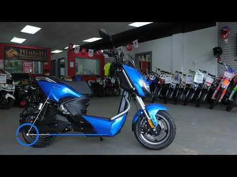 2021 Ziggy Z3 in Virginia Beach, Virginia - Video 1