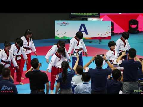 2017 Nationwide Competition,Taekwondo Dance 1st,the Dragon Team 2017 全国总决赛 跆舞比赛 冠军 中国龙队