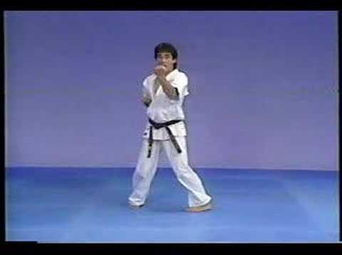 Karate kyokushin kata Gekisai dai