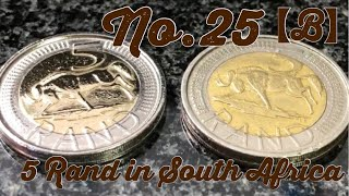 No.25 I want to polish very big coin !【 5 Rand in South Africa 】【Coin Polish】