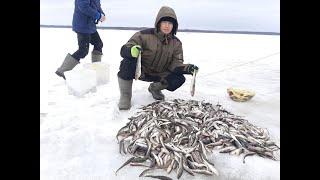 Хочу на рыбалку в море 2020