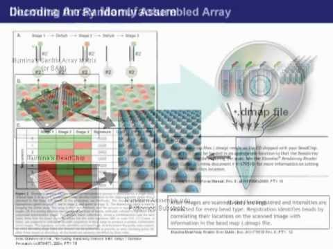 Image of Biotechnology Patent: DNA Microarrays