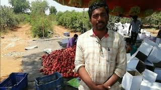 Srikanth shivappa Banad