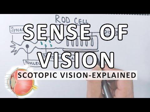 Hogyan lehet helyreállítani a rövidlátó látást