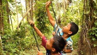 Pertualangan Anak anak Desa, Menembak Burung Menggunakan Ketapel