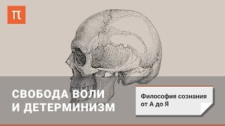 Философия сознания: Свобода воли и детерминизм