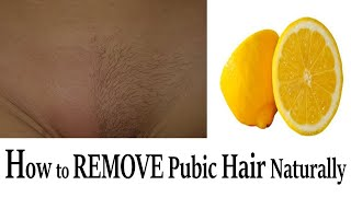 How to Remove Pubic Hair Permanently Natural Hair Removal Home Remedies- Health Pavilion BRIGHT SIDE