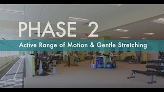 Rotator Cuff Exercises for Pain Relief | How to Strengthen Rotator Cuff | Phase 2
