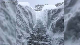 Erie,PA Record Snow Christmas 2017