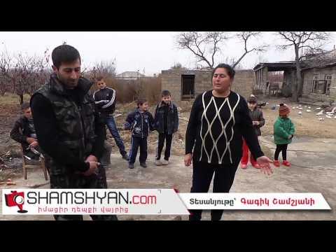 Հայկավան գյուղում արու գայլ են վնասազերծել