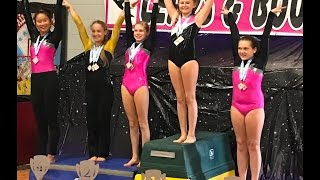 Xcel Gold Gymnastics Meet - Bingo Bash, Elkhart Indiana