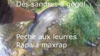 PECHE AUX LEURRES, SANDRES A GOGO !