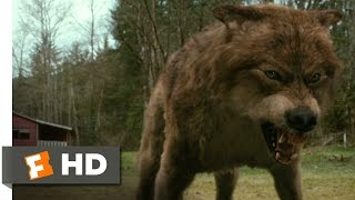 Twilight: New Moon (7/12) Movie CLIP - Jacob's Transformation (2009) HD