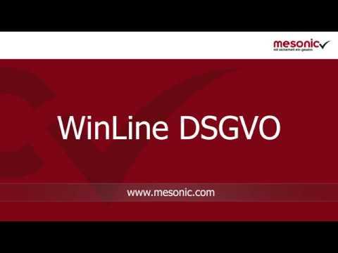 mesonic WinLine DSGVO in Kürze