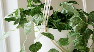 The Easiest Macrame Plant Hanger You Can Make | Tutorial For Complete Beginners