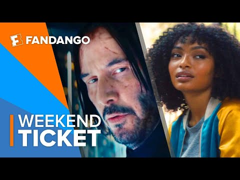 In Theaters Now: John Wick: Chapter 3, A Dog's Journey, The Sun Is Also a Star | Weekend Ticket