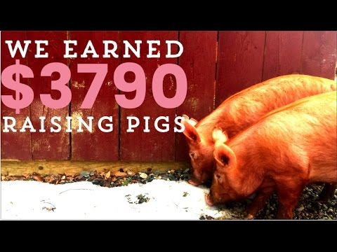 , title : 'Make Money with Pastured Pigs