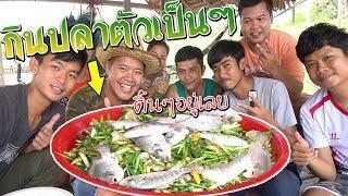 กินปลาดิบตัวเป็นๆ!!รวมช่องยูทูปจัดปาตี้กินปลาสดๆ#คำโอ๊ะๆ *joe channel(อย่าลอกเลียนแบบ)