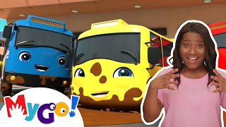 Carwash Song | ASL - American Sign Language | Baby Songs | Little Baby Bum