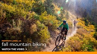 Mountain Biking Hotspots for Fall Color by Expert Rider – Luke Wynen