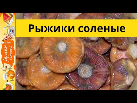 Рыжики соленые холодным способом