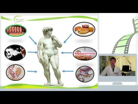 Простата и предстательная железа у мужчин