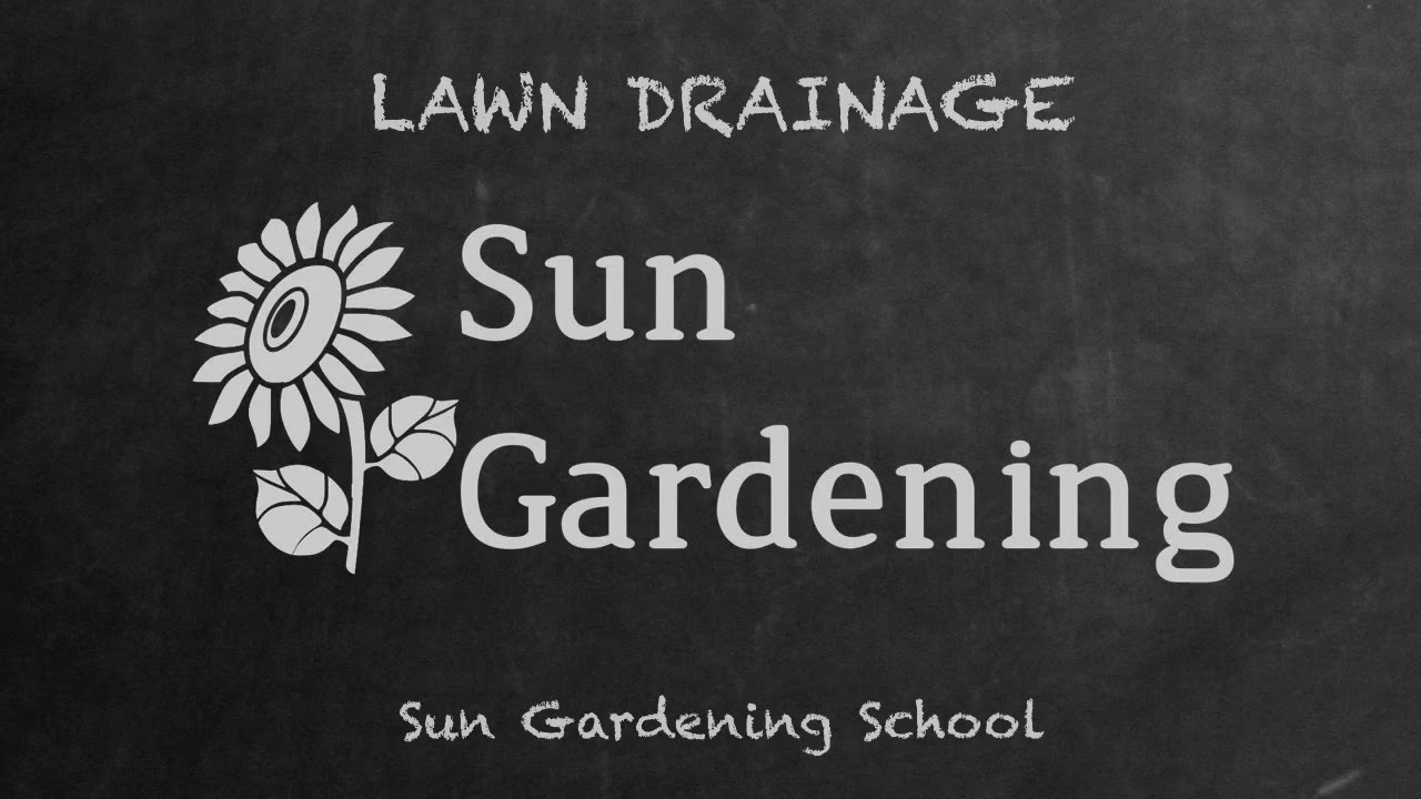 Lawn Drainage
