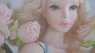 Virginia Fragile Beauty - Video