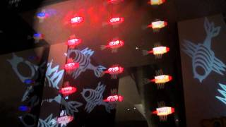 VIDEO : The Fish Tree - Night Light - Singapour 2011