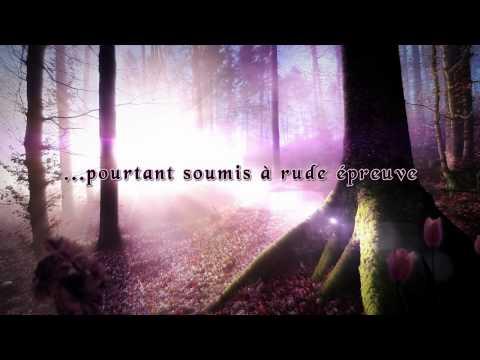 Vidéo de Nora Roberts