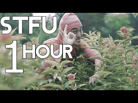 STFU (only Rap Part) By FILTHYFRANK 1 Hour Looped - RacsoGG