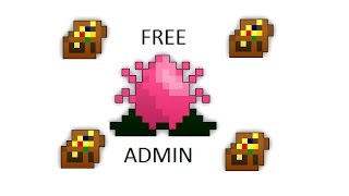 Rotmg:Private Server Free Admin NOVO LINK 16/07/2017