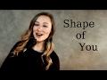 Shape Of You - Ed Sheeran (Megan Nowlan cover)