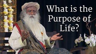What is the Purpose of Life? – Sadhguru