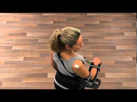 Tazabedrenny gemeinsame Muskeln