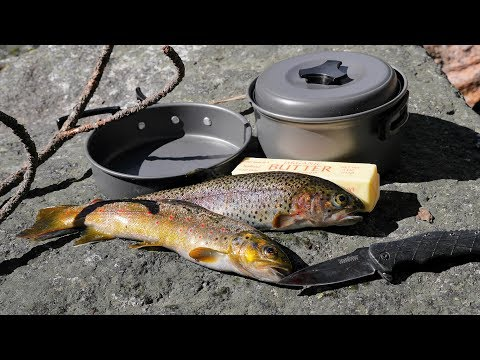 Catch and Cook and Camp Ep. 3 * Solo 2 Night 3 Days in the Wild * No Tent